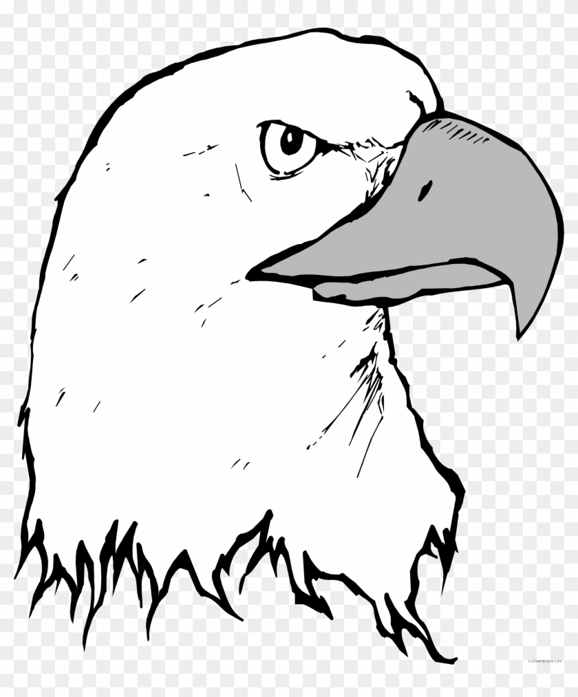 Eagle Head Vector Art Ilration Of A Black And White Bald In
