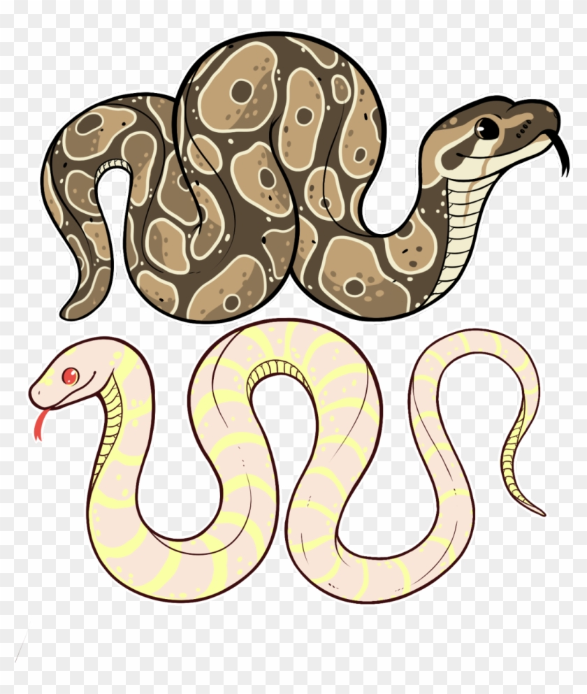 snakes are cute snake tumblr art free transparent png clipart