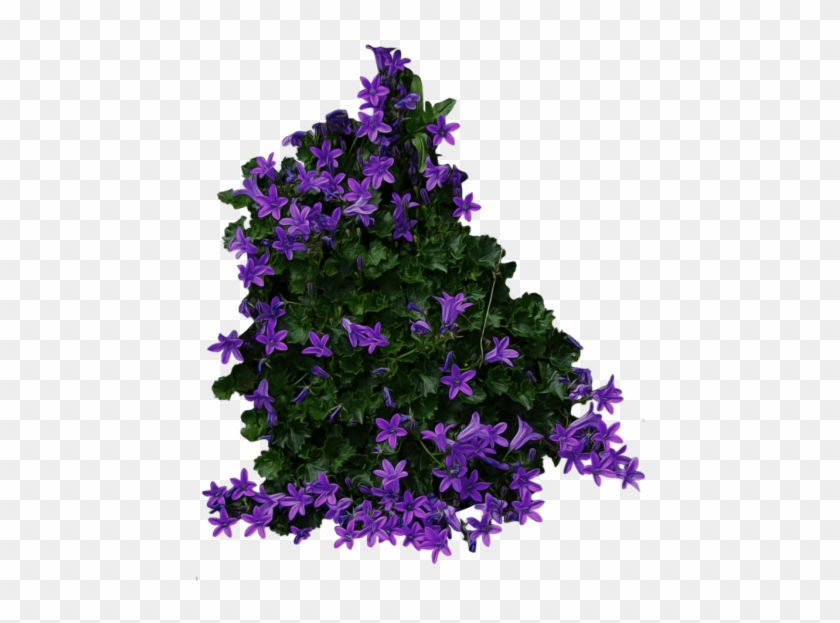 Free Png Bush Png Images Transparent - Flower Bush Transparent