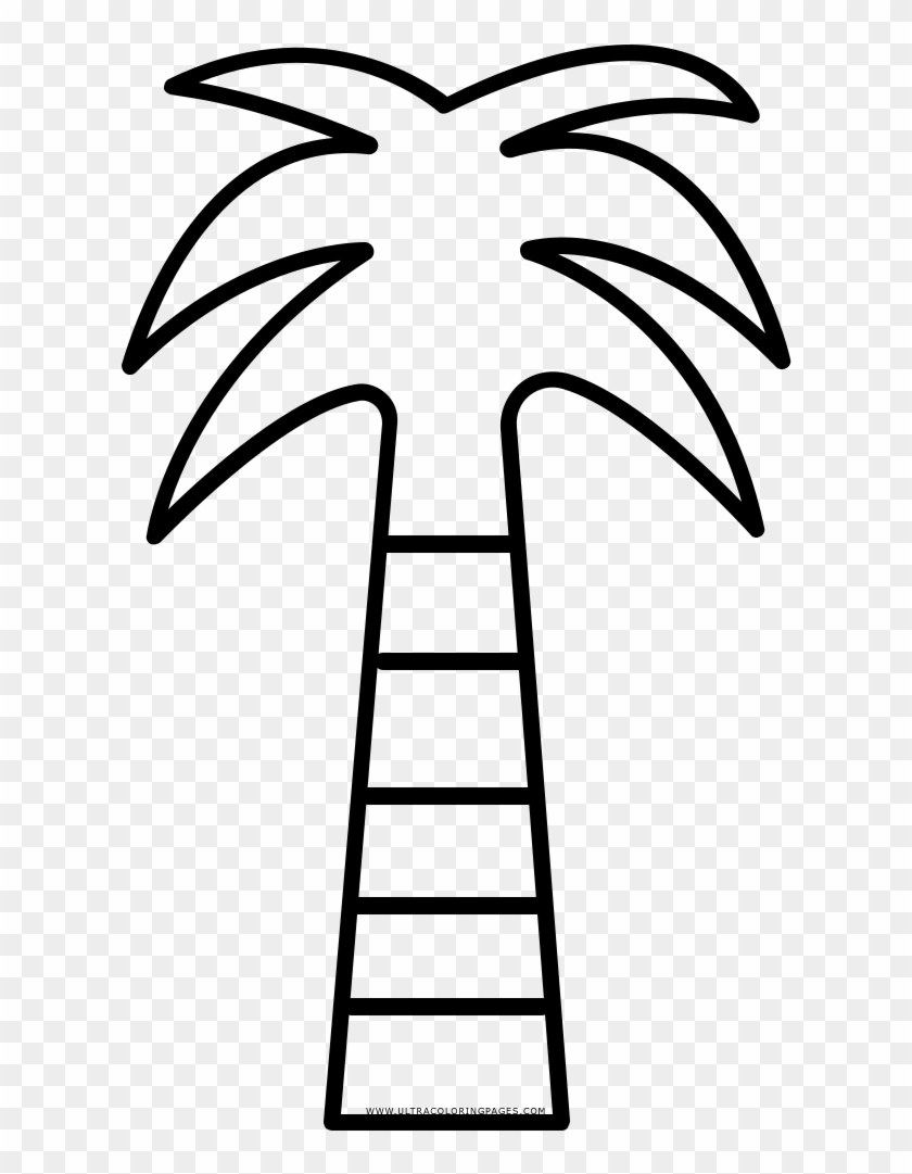 - Coconut Tree Coloring Page - Coloring Book - Free Transparent PNG