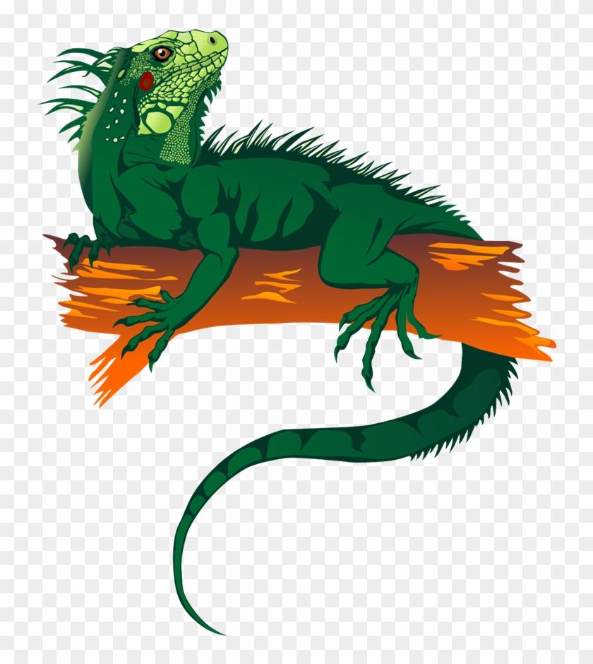 Free To Use &, Public Domain Reptile Clip Art - Gambar Kartun Iguana #170886