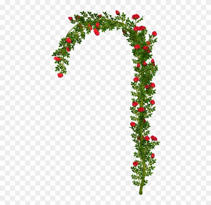 Rosebush Arch Element Png Clipart Picture - Rose Bush Png #171085