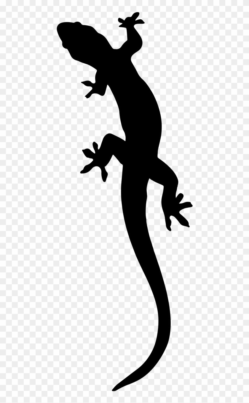 Free Image On Pixabay - Gecko Clipart #171157