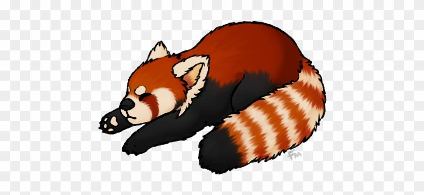Red Panda Png - Red Panda No Background #171260