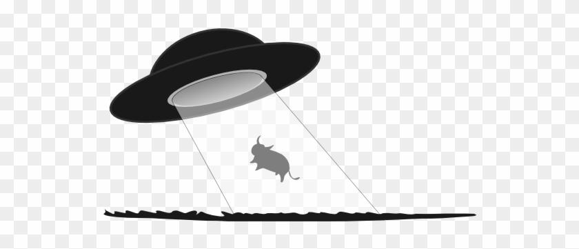 Cow Abduction Black White Line Art 555px - Ufo Abduction Transparent Background #171365