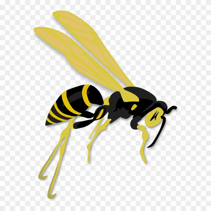 Flying Clip Art Download - Wasp Clipart #171388