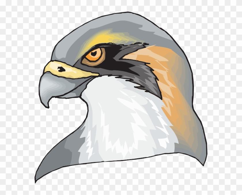 Hawk Head Clip Art At Clker Com Vector Online Royalty - Your Limit Beach Towel #171535