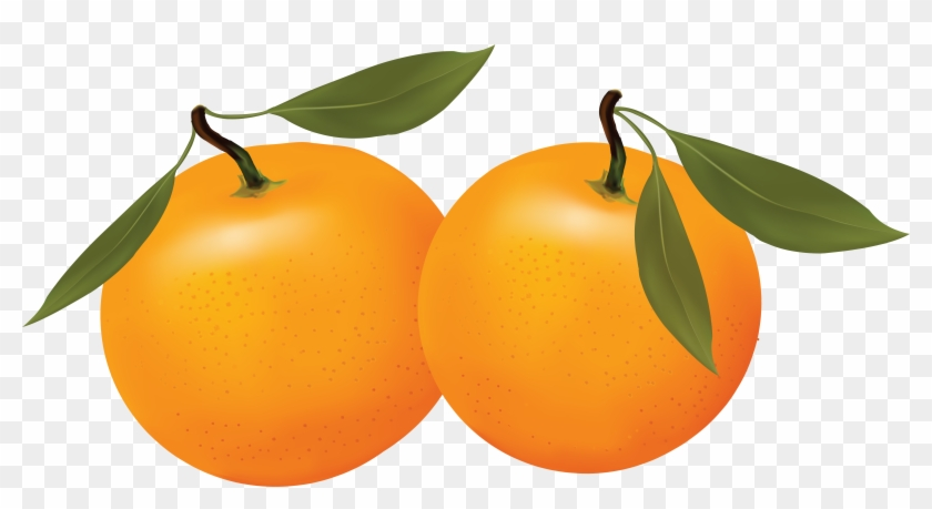 Orange Png Image Free Clipart Panda Images Png - All Kinds Of Fruits #173434