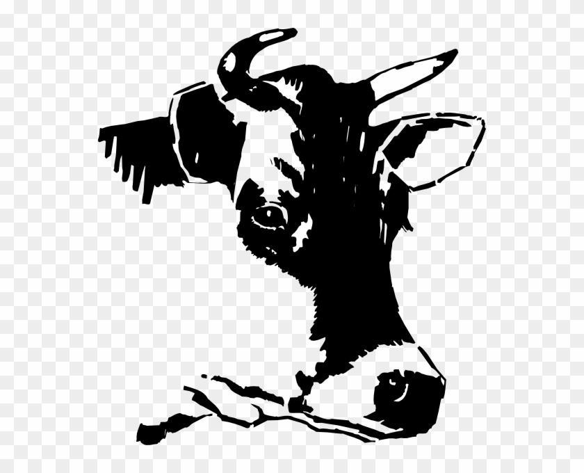 Cow Svg Google Search Head Of Cow Drawing Free Transparent Png Clipart Images Download