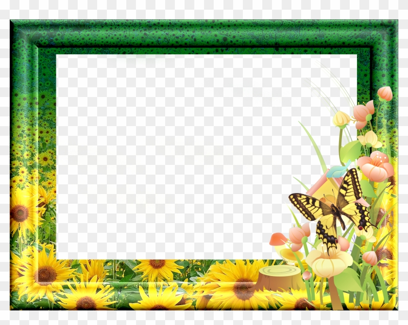 Green Photo Frame - Green Borders And Frames Png - Free Transparent ...
