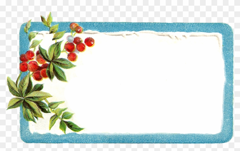 Poinsettia Clipart Christmas Gift Tag Vintage Transparent Christmas Photo Frame Free Transparent Png Clipart Images Download