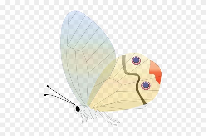 Comic Butterfly Vector Illustration - Custom Butterfly Shower Curtain #961034
