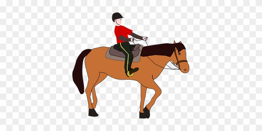 Cavalier Horseman Equestrian Horse Horse Riding Cartoon Free Transparent Png Clipart Images Download
