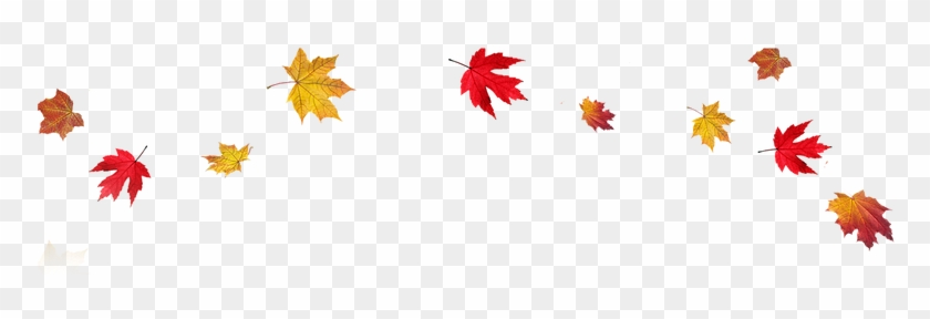 Fall Leaves Border Png #964478