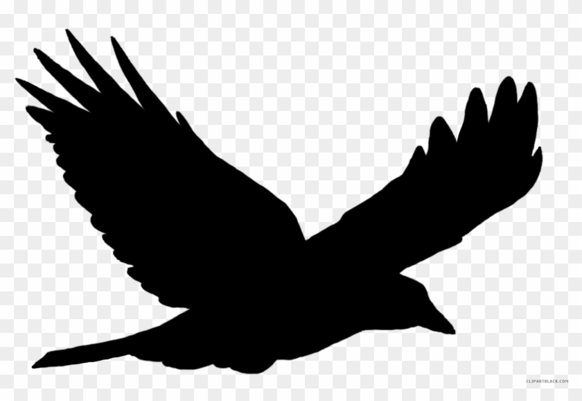 Crow Animal Free Black White Clipart Images Clipartblack - Flying Bird Silhouette Vector #966074