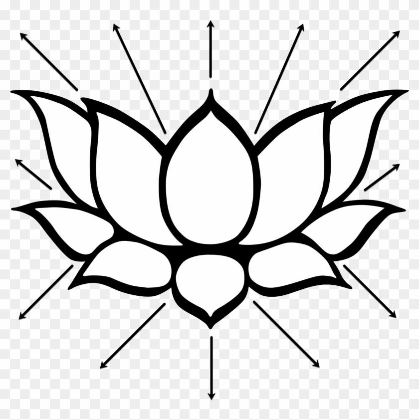Lotus Light Healing Session Lotus Flower Buddhism Symbols Free
