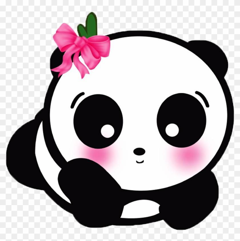 Giant Panda Cute Panda Cuteness Android Application Cute Panda Cartoon Png Free Transparent Png Clipart Images Download