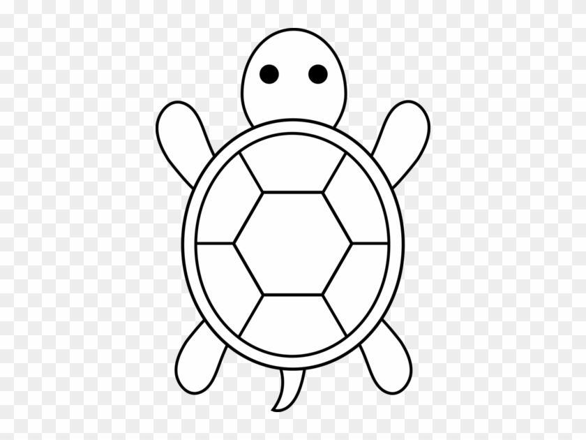 Sea Turtle Drawing Easy Free Transparent Png Clipart Images Download