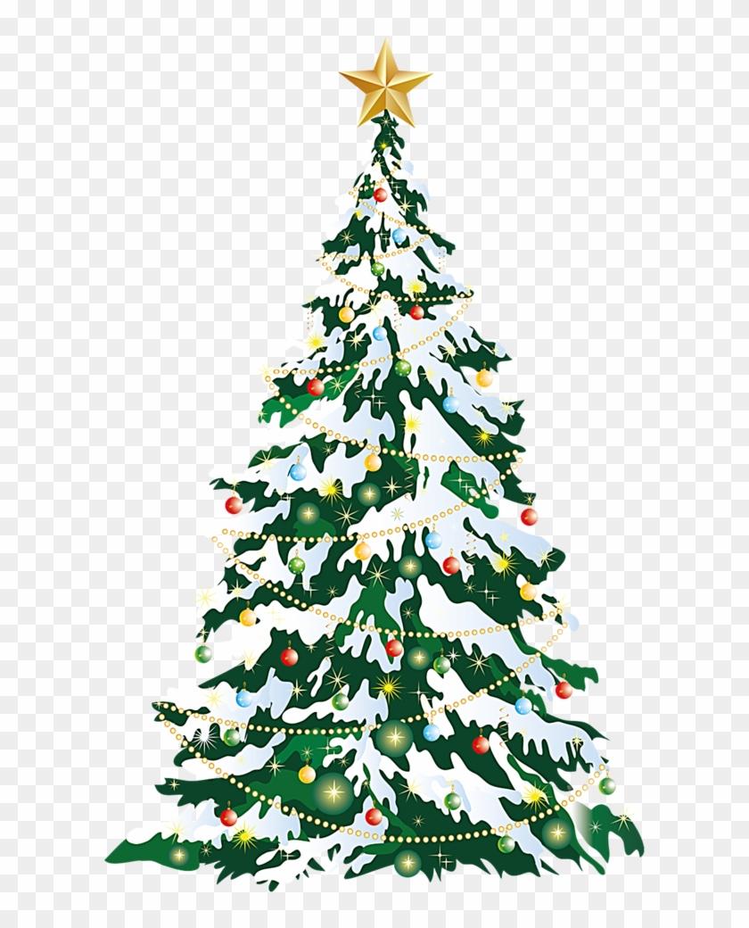 Christmas Tree Christmas Card Clip Art Christmas Tree Png Hd