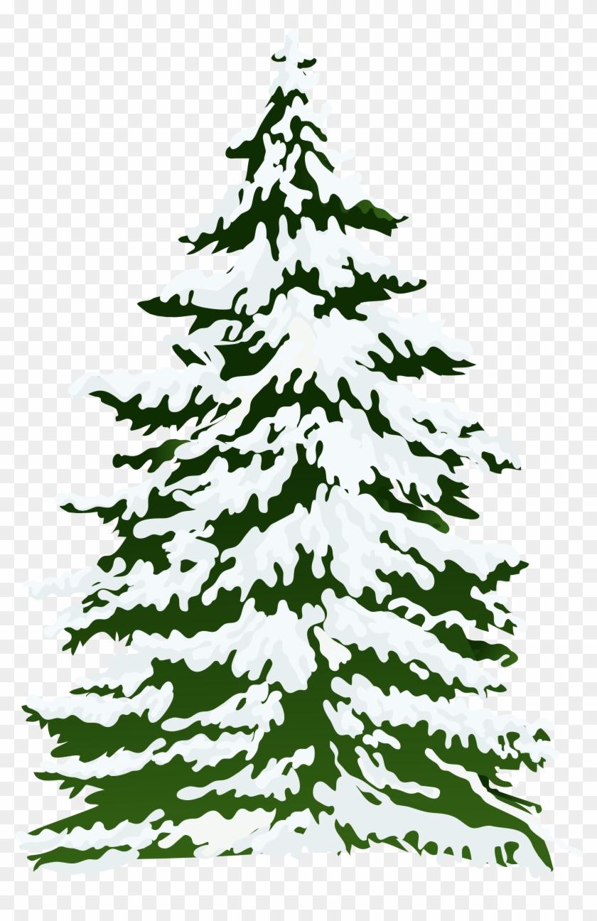 Snowy Tree Clip Art - Snow Pine Tree Png #983390