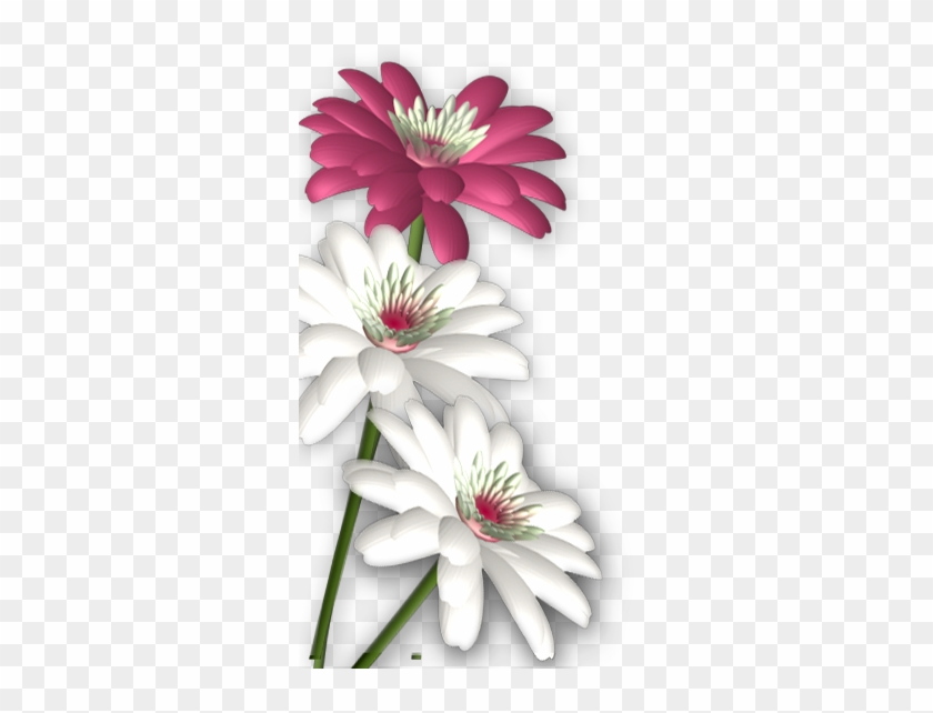 Photoshop Clipart Round Flower Design - Background Flowers For