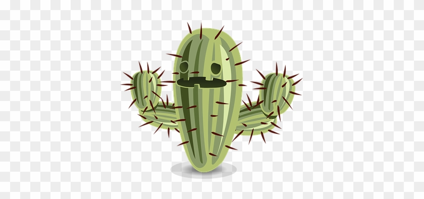 Cactus Prickly Nature Plant Green Desert T - De Cactus #991884