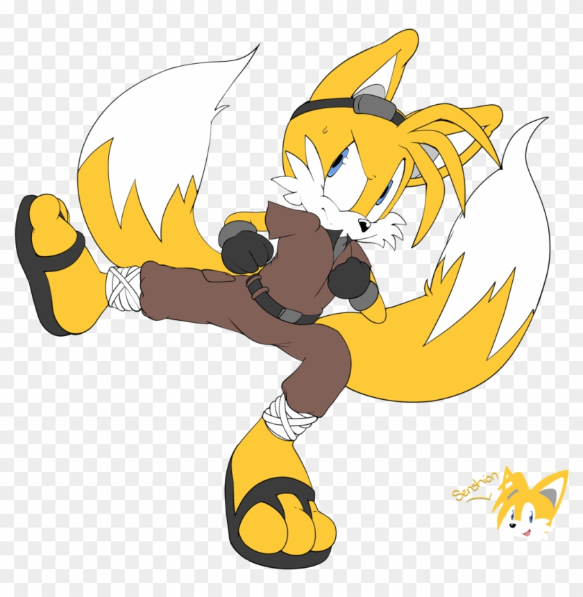 Kung Fu Tails By Senshionart Kung Fu Tails By Senshionart Kung Fu