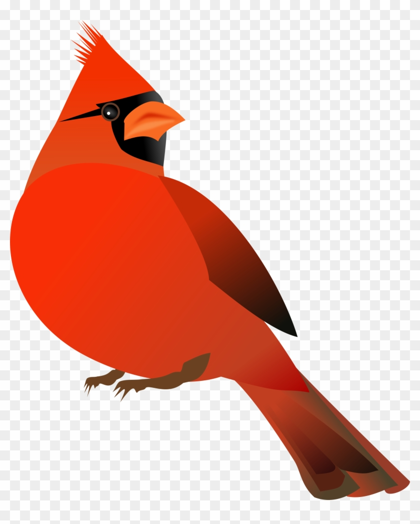 Red Cardinal Clip Art - Note Cards (pk Of 20) #175625