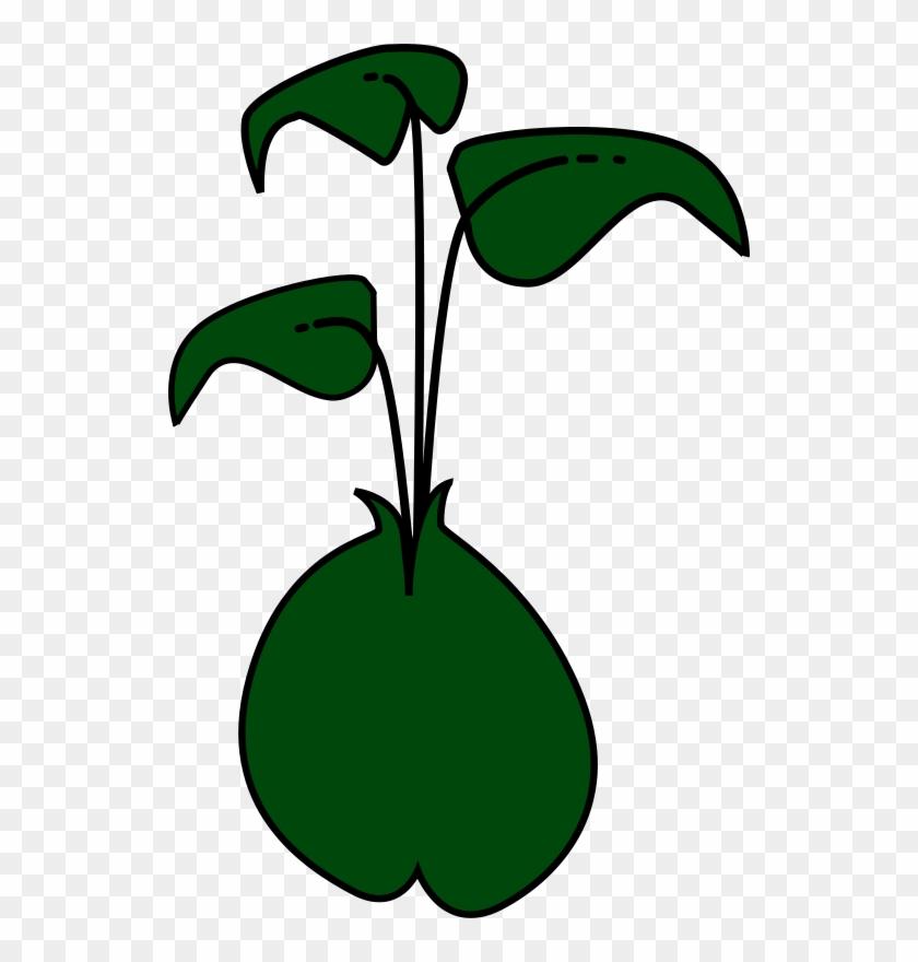 Bean Sprout Cartoon #175786