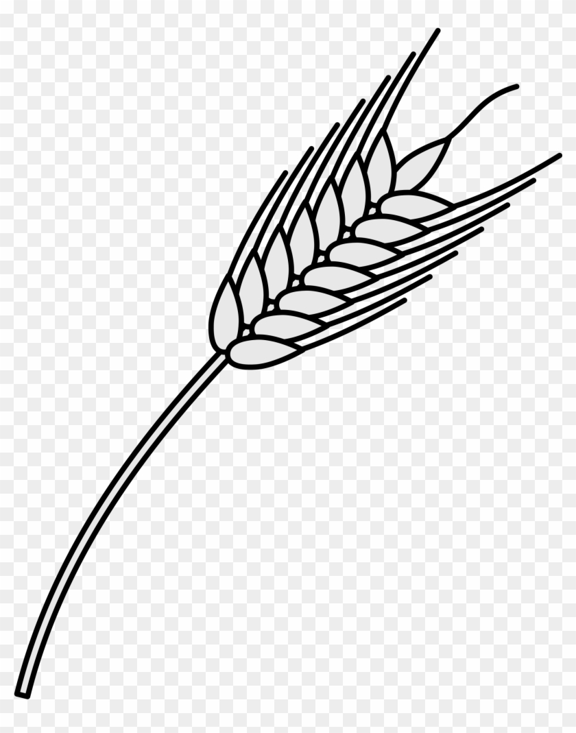 Open - Wheat Heraldry Png #998203