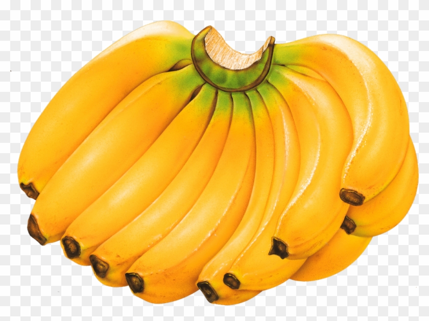 Picture Of Banana Fruit Clip Art