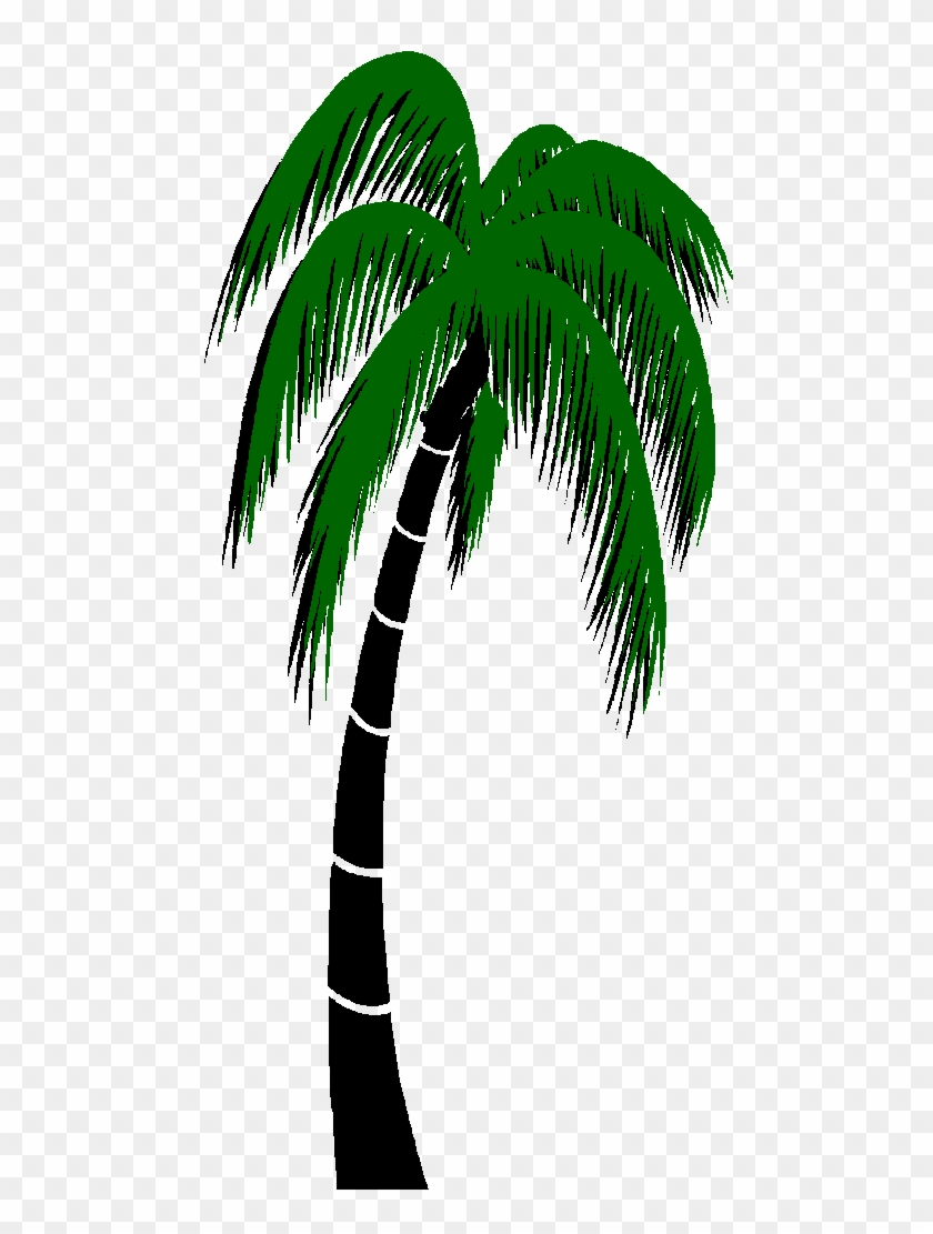 Graphics For Palm Trees Animated Graphics Animated Palm Tree Gif Free Transparent Png Clipart Images Download The image is gif format with a resolution of 591x477 pixels, suitable for sharing in facebook or other social media sites. animated palm tree gif