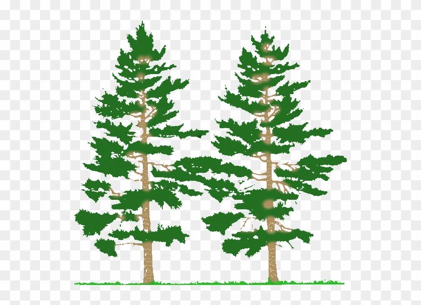Pine Tree Forest Clip Art - Farming Simulator 2017 Mods Tree 2017 #1000590