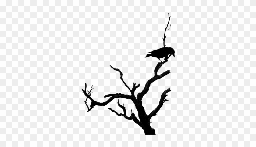 Deluxe Dead Tree Clipart Dead Tree Silhouette Clipart Bird On Dead