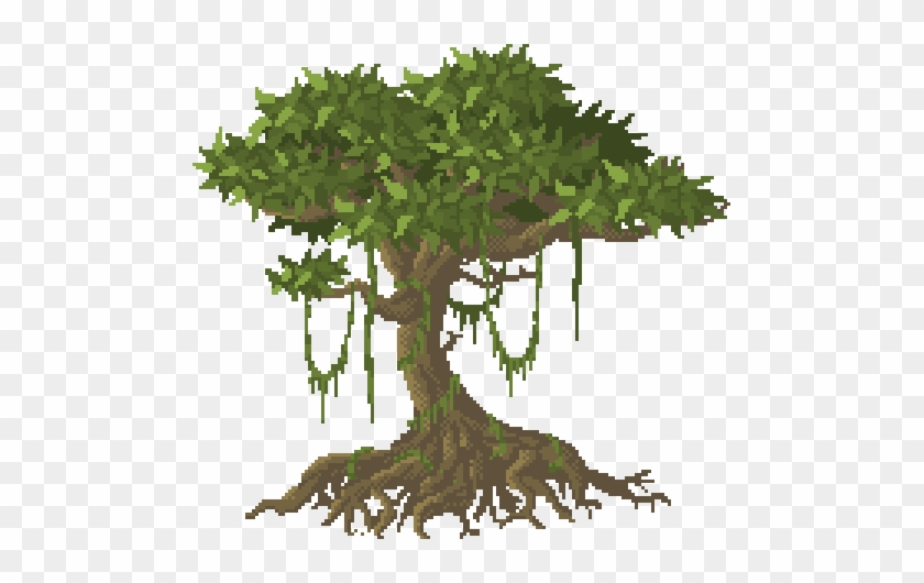 Drawn Plant Jungle Tree - Clipart Jungle Trees #1001496