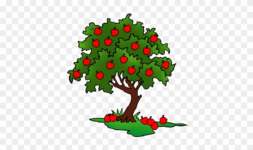 Clip Art - Apple Tree Drawing #1001713