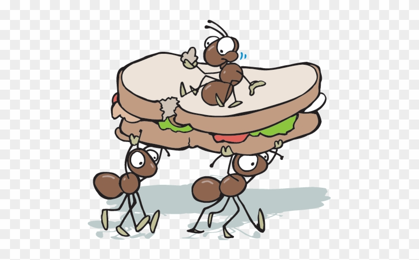 The Scavengers And Decomposers Help Move Energy Through - Ants At A Picnic #1002017