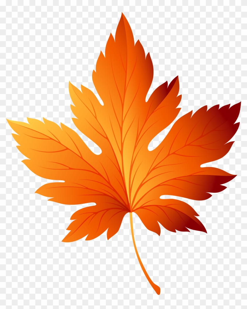 Clip Art Of Fall Leaves Decorative Branch With Autumn - Fall Leaf Clip Art #1002587