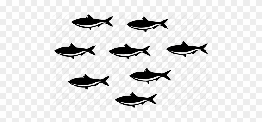 Fishes Many Fish School Of Fish Sea Sealife Team School Of Fish Icon Free Transparent Png Clipart Images Download