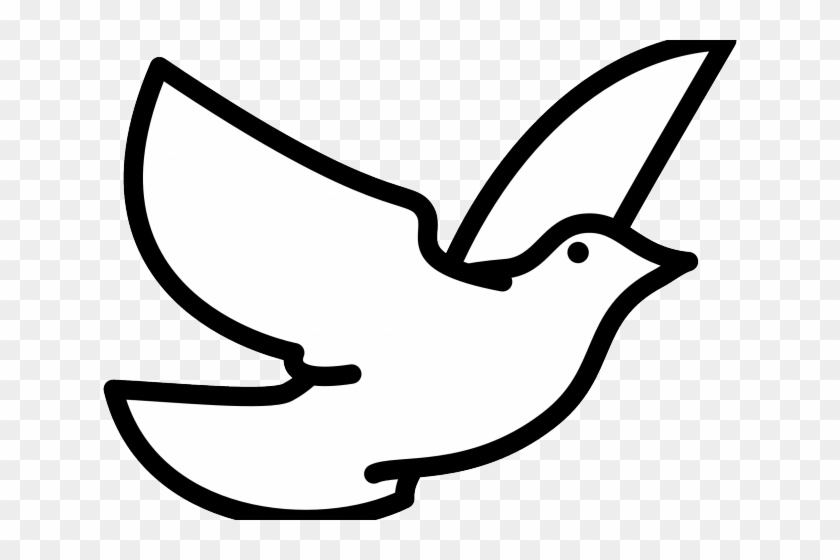 Transparent Dove Peace Symbol White Pictures Picturesboss