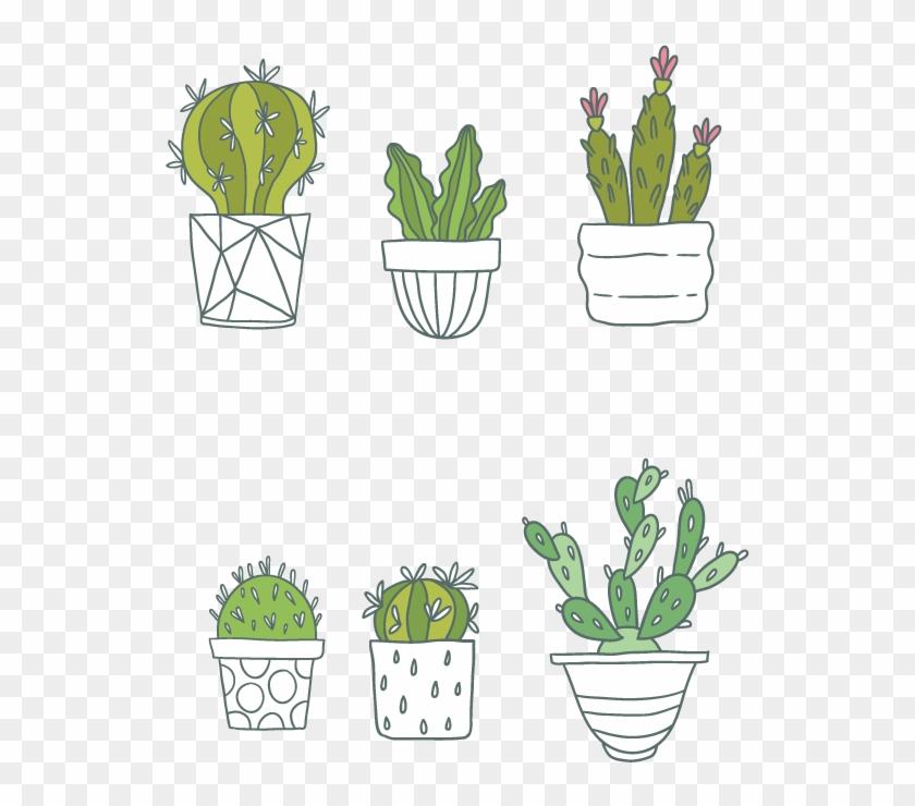Cactaceae Succulent Plant Clip Art - Wall Stickers Cactus Plant Photo Frame Vinyl Wall Stickers #1008186