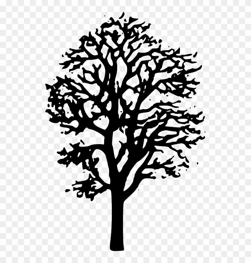 Maple Tree Clipart Black And White - Maple Tree Clip Art #1008219