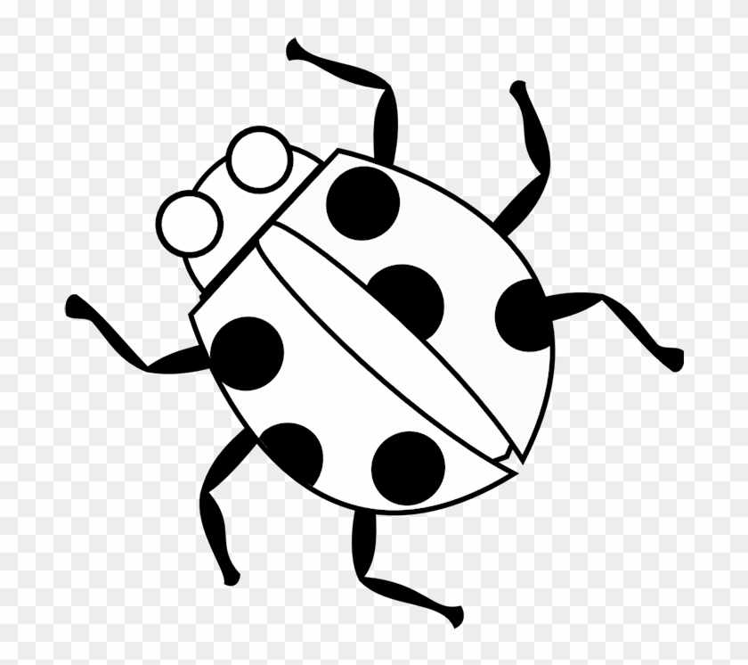 graphic about Ladybug Printable Coloring Pages known as Ladybug Coloring Internet pages Printable - Coloring E book - Free of charge