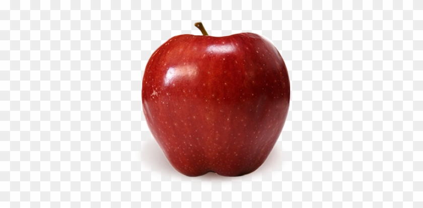 16+ Apple Clipart Png in 2020 | Fruit clipart, Apple fruit images, Apple  clip art