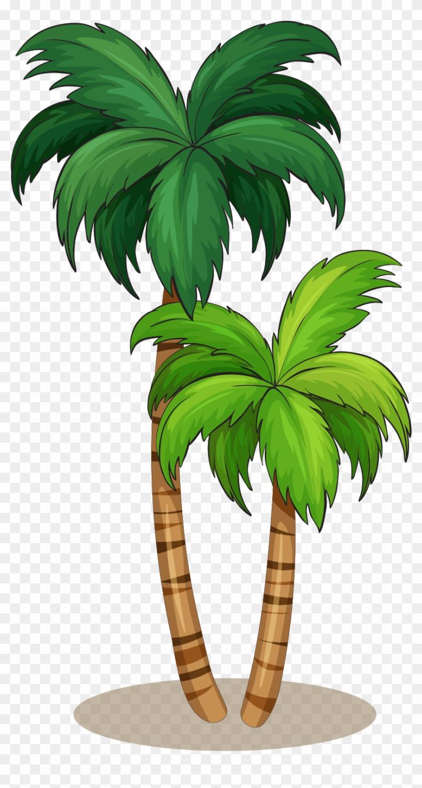 Arecaceae Royalty-free Illustration - Coconut Tree Vector #1013653