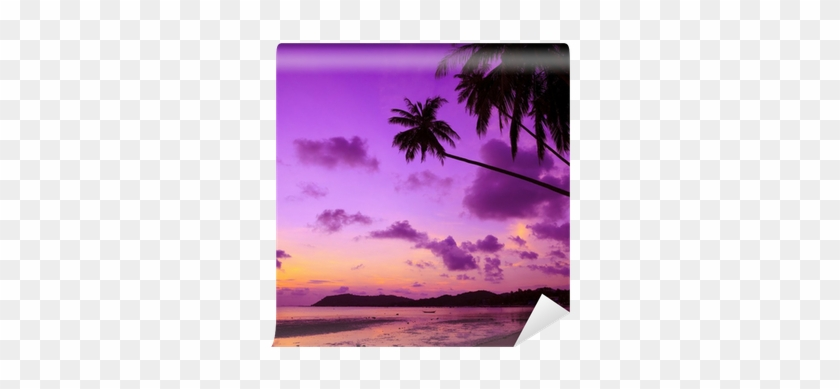 Tropical Beach With Palm Trees At Sunset, Thailand - Pink Sand Beautiful Beaches #1013814