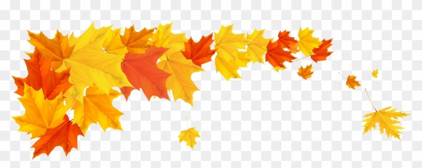 Autumn Desktop Wallpaper Clip Art Fall Png Free Transparent