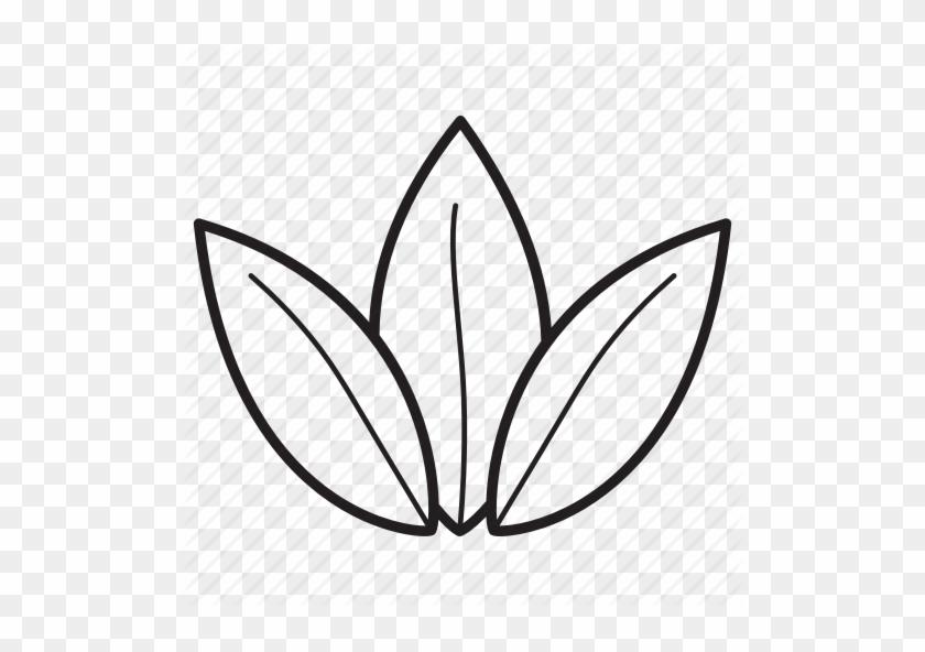 Transparent Tea Leaves Png - Transparent Leaf Vector Png, Png Download ,  Transparent Png Image - PNGitem