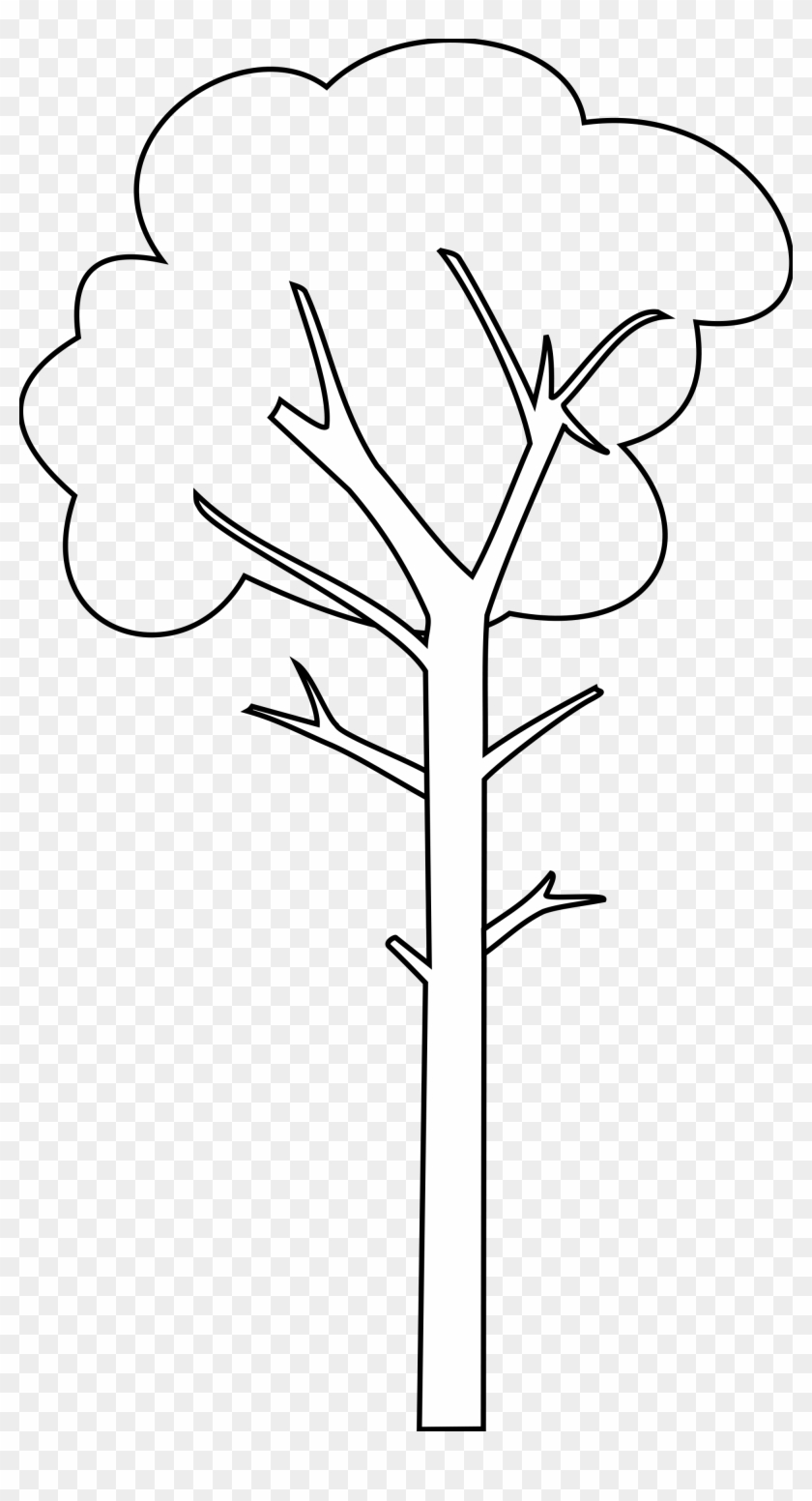 Tall Tree Cartoon Black And White Free Transparent Png Clipart Images Download Find & download free graphic resources for trees cartoon. tall tree cartoon black and white