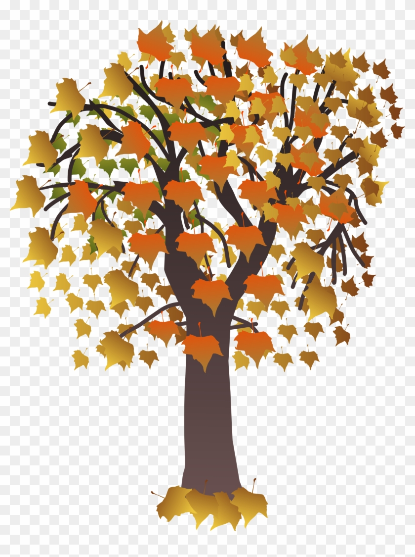 Maple Autumn Png Images - Draw A Maple Tree #1015361